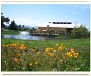 Photo of Reynolds Family Winery - Napa, CA