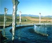 Photo of Artesa Winery - Napa, CA