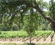 Photo of Laird Family Estate - Napa, CA