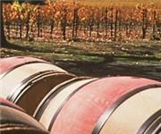Photo of PlumpJack Winery - Oakville, CA