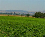 Photo of Mahoney Vineyards - Napa, CA