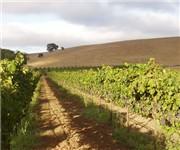 Photo of Trahan Winery - Napa, CA