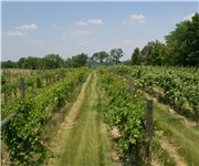 Photo of August Hill Winery - North Utica, IL