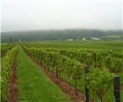Photo of Breaux Vineyards - Hillsboro, VA