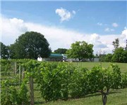 Photo of Hickory Hill Vineyards - Moneta, VA