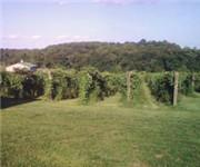 Photo of Kreutz Creek Winery - West Grove, PA - West Grove, PA