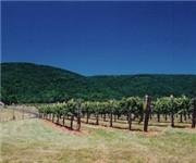 Photo of Afton Mountain Vineyards - Afton, VA