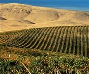Photo of Desert Hills Winery - Yakima, WA