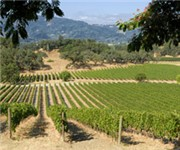 Photo of Balverne Cellars Inc. - Windsor, CA