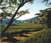 Photo of Joseph Phelps Vineyards - St Helena, CA