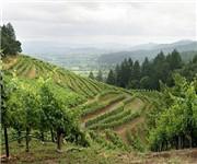 Photo of Moon Vineyards - Napa, CA