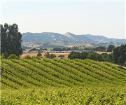 Photo of Wild Hog Hill Winery - Healdsburg, CA