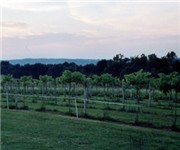 Photo of Carousel Winery - Bedford, IN