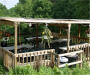 Photo of Allegro Vineyards - Brogue, PA