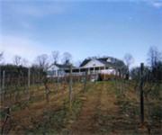 Photo of White Rock Vineyards & Winery - Goodview, VA