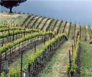 Photo of Kistler Vineyards - Sebastopol, CA