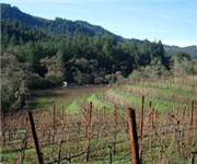 Photo of Von Strasser Winery - Calistoga, CA