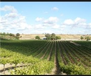 Photo of RiverStar Vineyards - San Miguel, CA