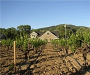 Photo of Talty Vineyards & Winery - Healdsburg, CA
