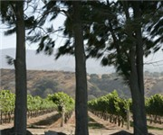 Photo of Wrath - Soledad, CA