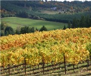 Photo of Apolloni Vineyards - Forest Grove, OR